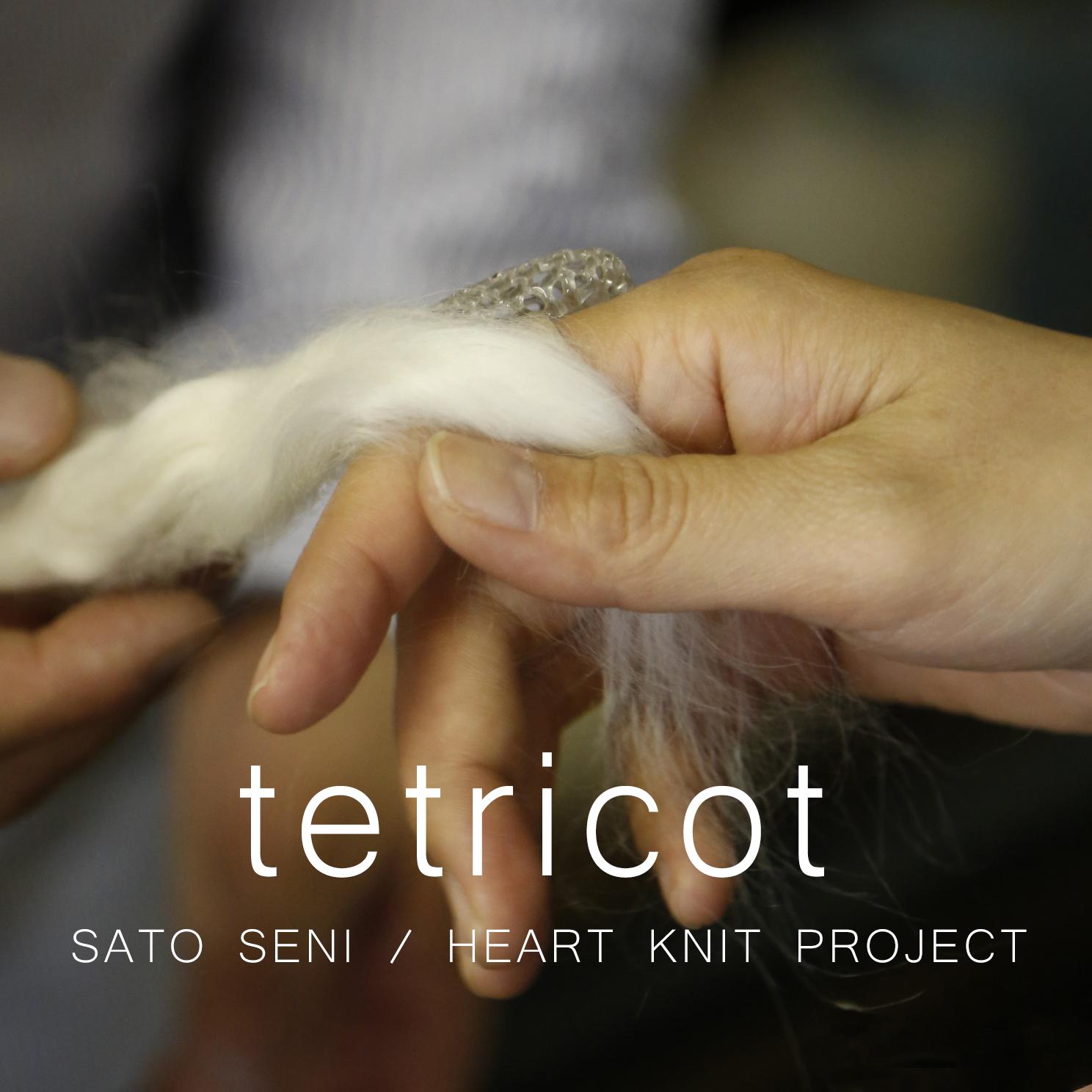 手編みプロジェクト/テトリコットがスタートします。の写真
